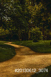Dior's Garden